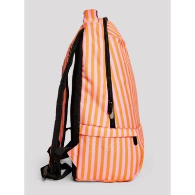 Diario 10 mes STD Turtles 15